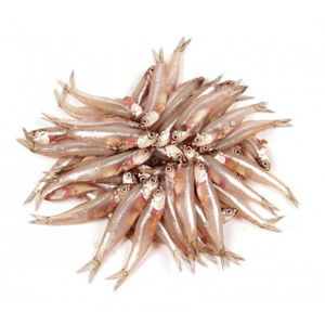 An anchovy is a small, common salt-water forage fish of the family Engraulidae. The 144 species are placed in 17 genera, they are found in the Atlantic, Indian etc. now available at meatmart.lk
